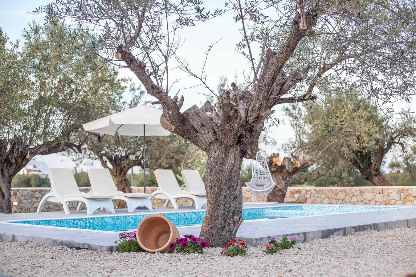 Rhodes Holidays Kalathos Dream Villas White Dream Rhodes 22