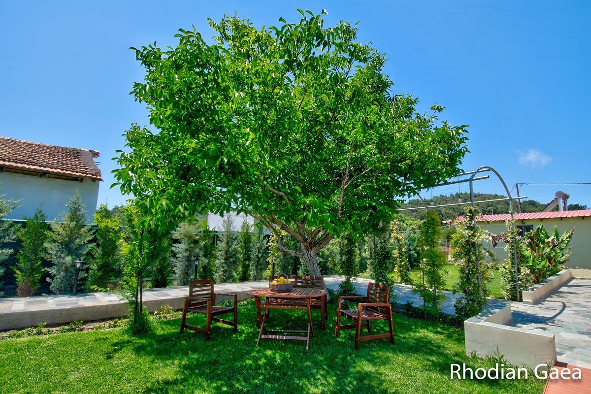 Rhodes Holidays Rhodian Gaea Villa Rhodes 25